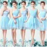 111504A Evening Gown/ Bridesmaid dress